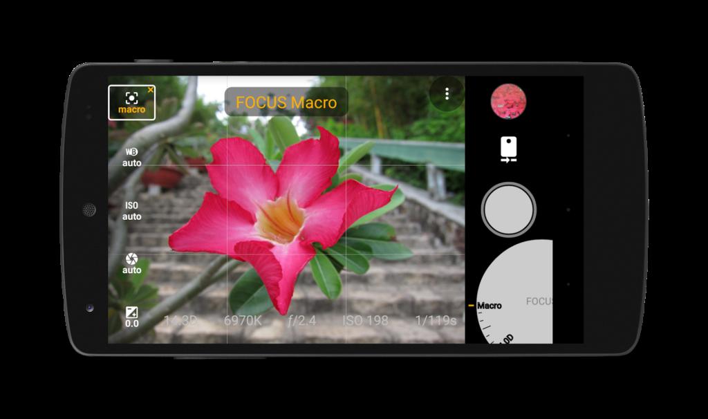 Как делать отличные фотографии с телефона в режиме макросъемки