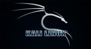 Read more about the article Как легко установить Kali Linux на компьютер с Windows