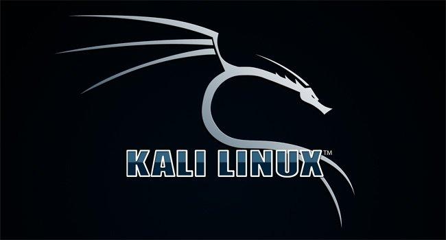 Как легко установить Kali Linux на компьютер с Windows