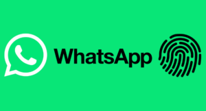 Read more about the article Как защитить свои чаты в WhatsApp с помощью блокировки отпечатком пальца на Android
