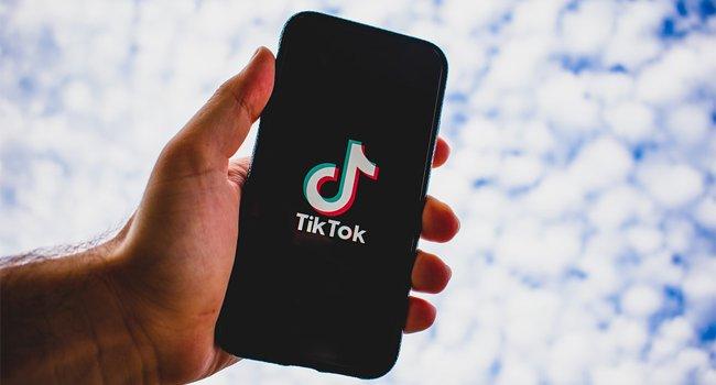 Read more about the article Как удалить водяной знак TikTok с мобильных видео