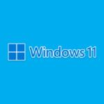 Как протестировать Windows 11, ничего не устанавливая