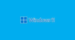 Read more about the article Как протестировать Windows 11, ничего не устанавливая